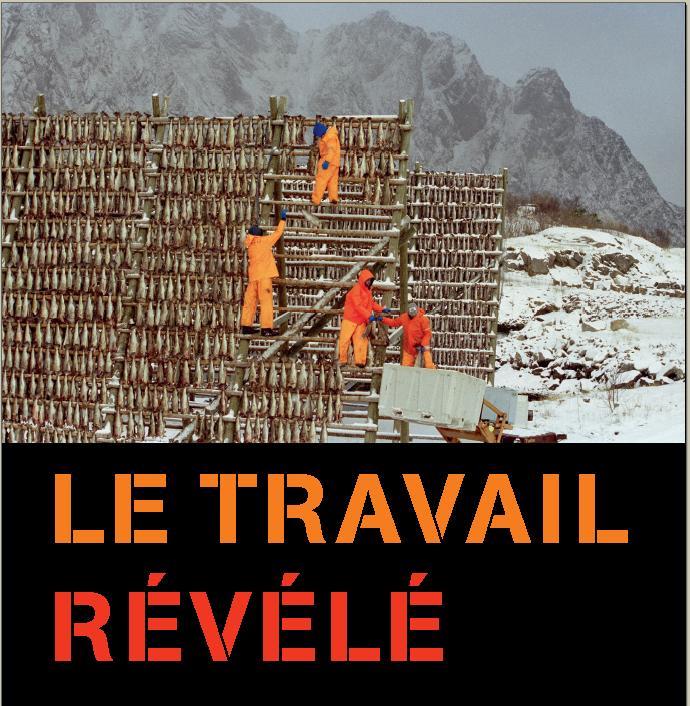 le_travail_revele